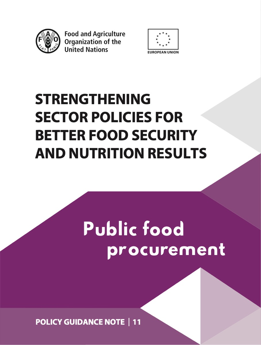 Strengthening sector policies for better food security and nutrition results: Public food procurement (2018)