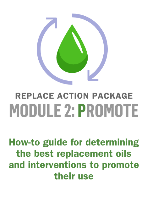 Technical package: REPLACE Module 2 (P)